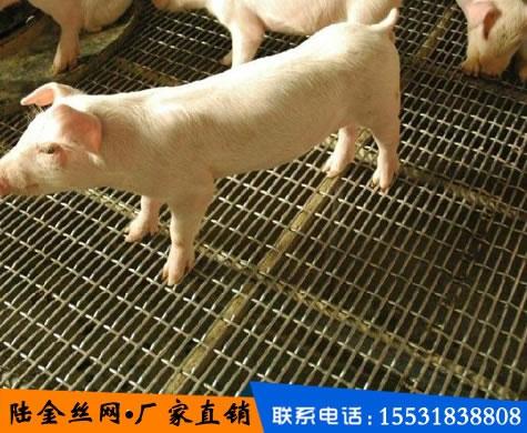 养猪轧花网